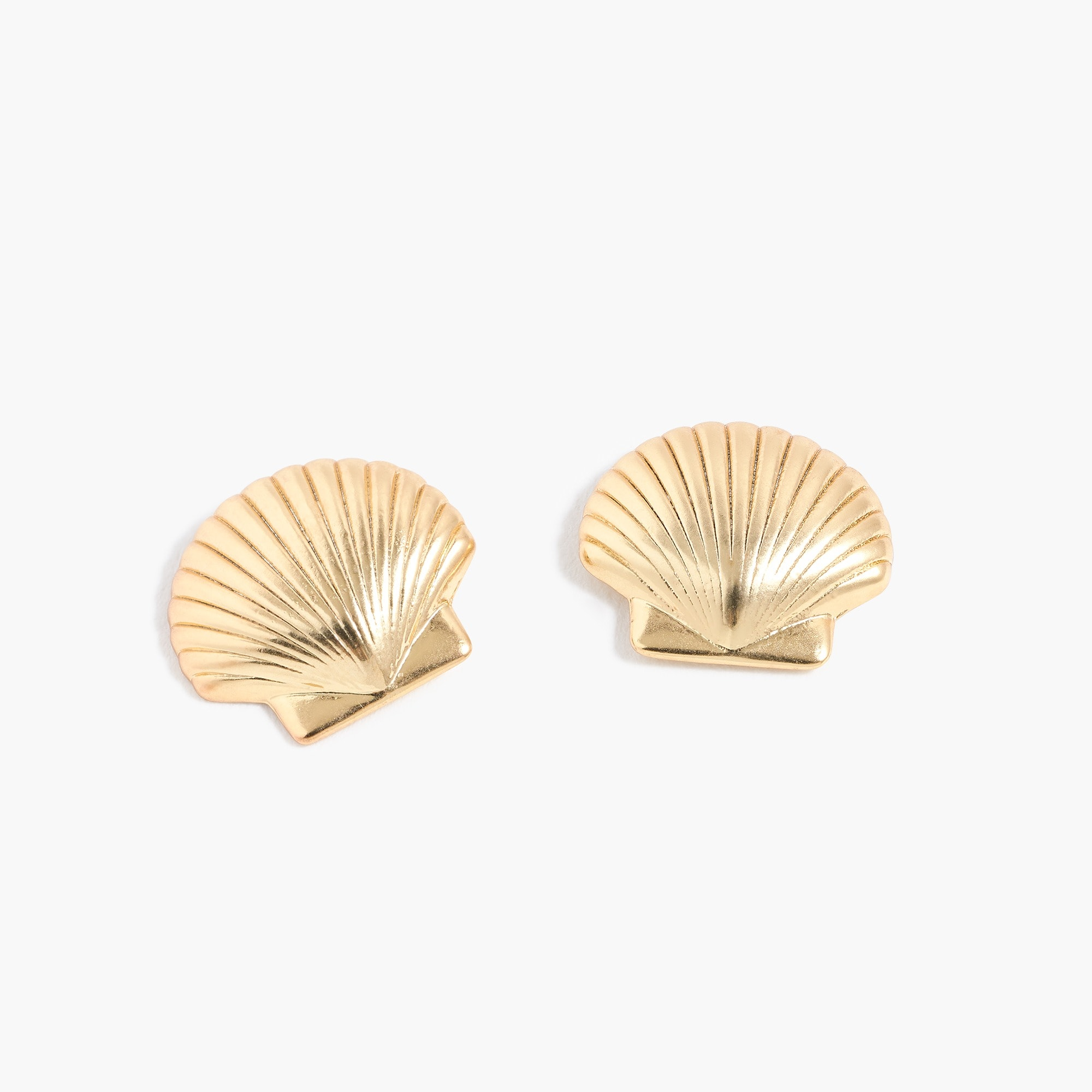 womens Scallop shell stud earrings